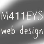 M411EYS web design