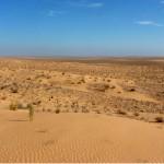 Sahara_1