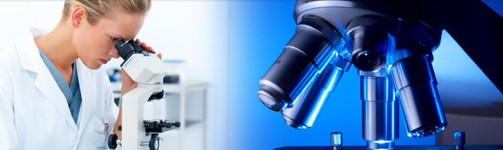Microscope servicing